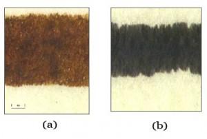 Illustration 1a Vues de tracés effectués avec les encres cupro- (a) et ferro-(b) galliques.