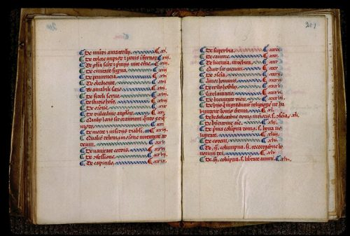 Bout-de-ligne, Angers, BM, 317 (308), f. 200v-201.