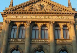 Hauptgebäude des Zoologischen Forschungsmuseums Alexander Koenig