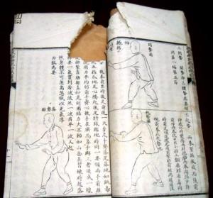 中华武士会书