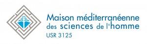 4.1 Logo-MMSH