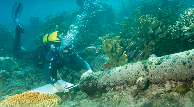 Actualités : exposition «Mémoire à la mer. Plongée au cœur de l'archéologie sous-marine»