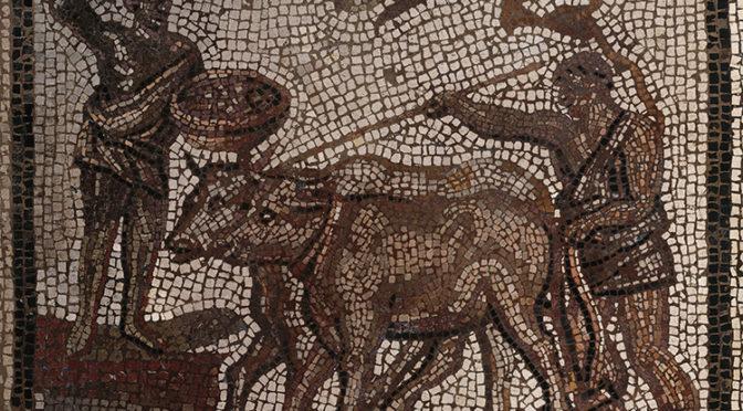Columelle et les céréales. Problématiques et enjeux des cultures de plein champ dans la littérature agronomique de l'Antiquité gréco-romaine