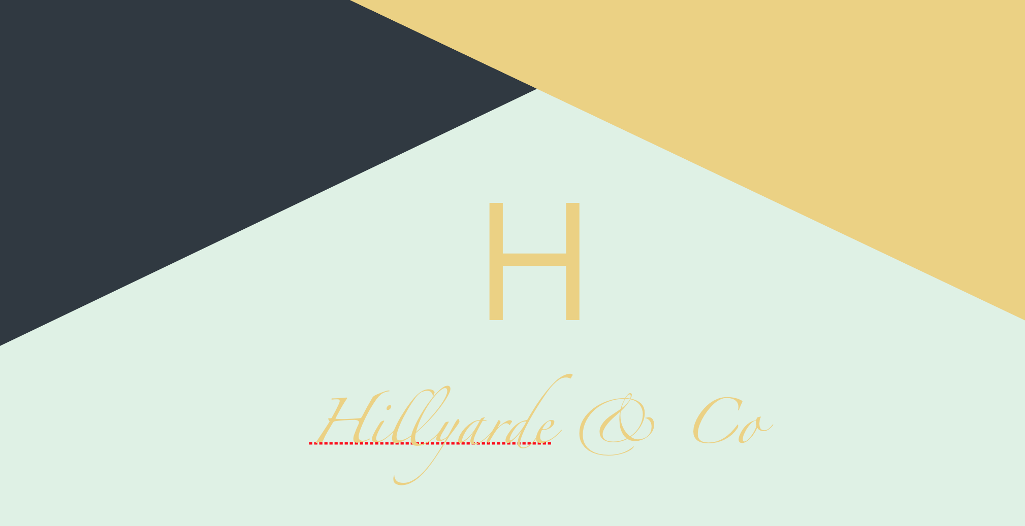 Hillyarde and Co