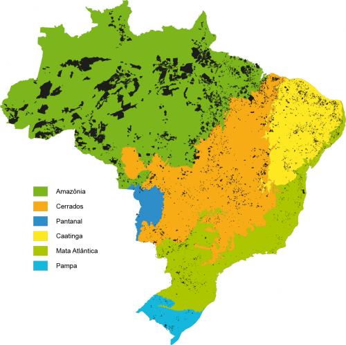 Assentamentos et biomas