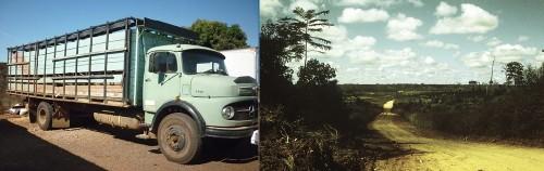 Route et camion