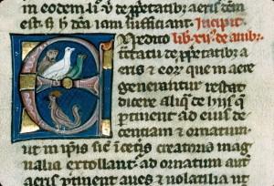 Barthélémy l'Anglais, De Proprietatibus rerum, Autun, BM, ms. 32, f. 132v.