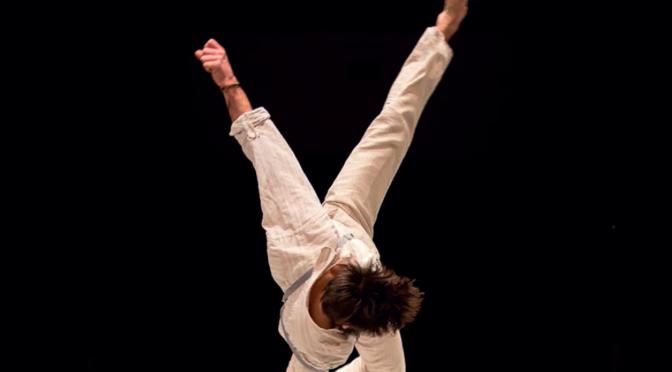 Publication de L'évolution de l'acrobatie contemporaine : regards croisés sur les pédagogies, Karine Noël, Damien Fournier, David Soubies, Arnaud Thomas et William Thomas.