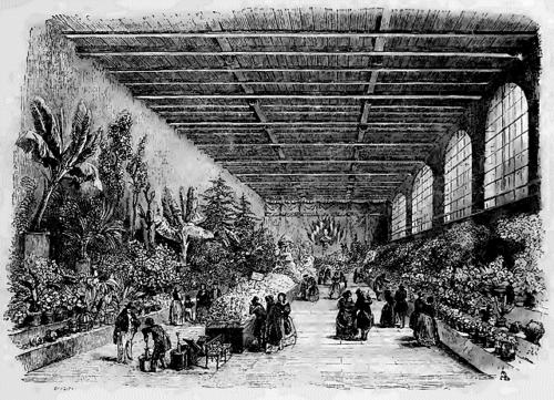 Exposition des produits de l'Horticulture à l'Orangerie de la Chambre des Pairs, extrait de L'Illustration, journal universel, n°12, 20 mai 1843, mis en ligne par le projet Gutenberg.