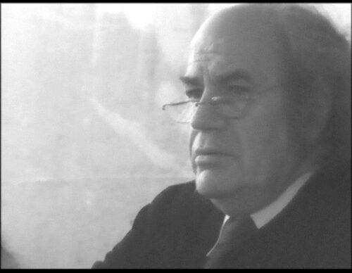Fig. 4 : capture d'écran de François Châtelet lors de la commission présente dans la vidéo.