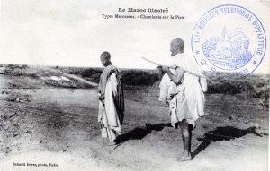 Maroc 1914-1918 - cheminots sur la piste (carte postale)