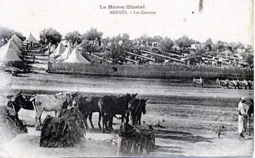 Meknès - Les convois (camp militaire) Maroc 1915