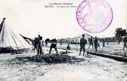 Meknès - le camp des oliviers