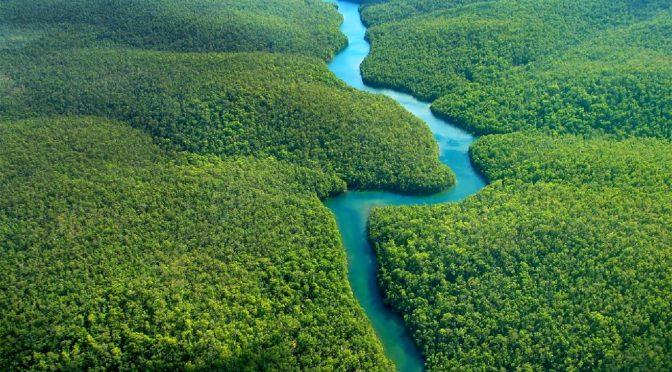 29 novembre [Soutenance thèse] Variabilité spatio-temporelle des régimes de pluies dans le bassin amazonien