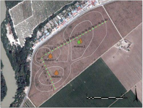 Fig. 1- Localisation des concentrations de mobiliers et des tests de ramassage réalisés à El Mohino (Palma del Río, prov. de Cordoue) en 2016. Doc. I. Gonzalez Tobar/LabEx Archimede.