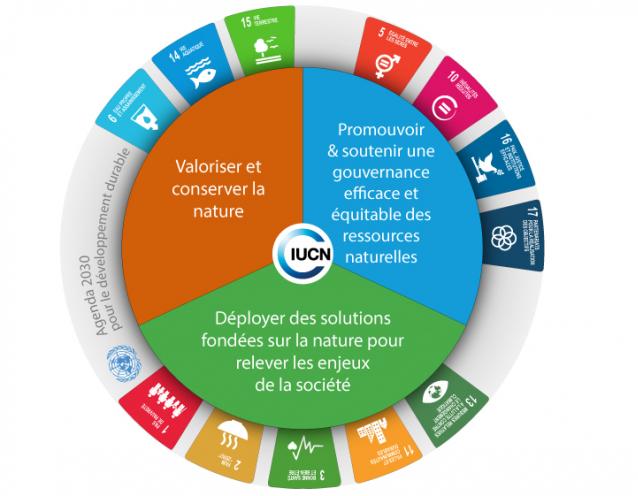 Les « trois domaines » du programme de l'UICN (Union Internationale pour la Protection de la Nature) 2017-2020 : Valoriser et conserver la nature ; Promouvoir et soutenir une gouvernance efficace et équitable des ressources naturelles ; Déployer des solutions fondées sur la nature pour relever les enjeux de la société.