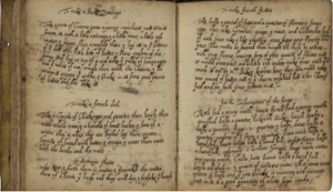 blog-full-paleography-image