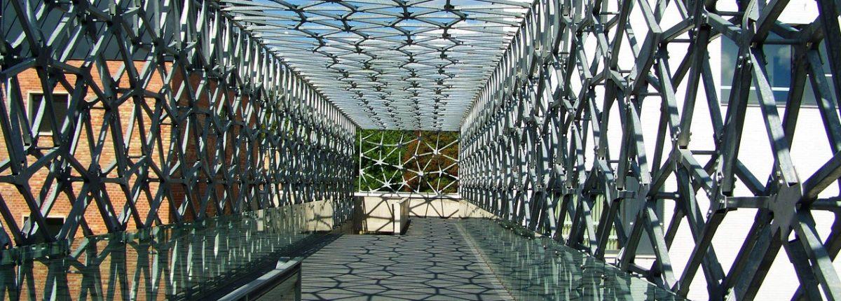 Frontières et mobilités dans les sciences