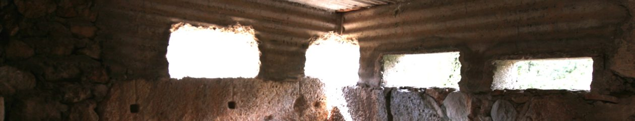 Les fortifications de Phocide et de Locride