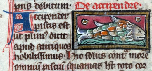 Thomas de Cantimpré, Liber de natura rerum. Valenciennes, BM, Ms. 320, fol. 123. xiiie siècle.