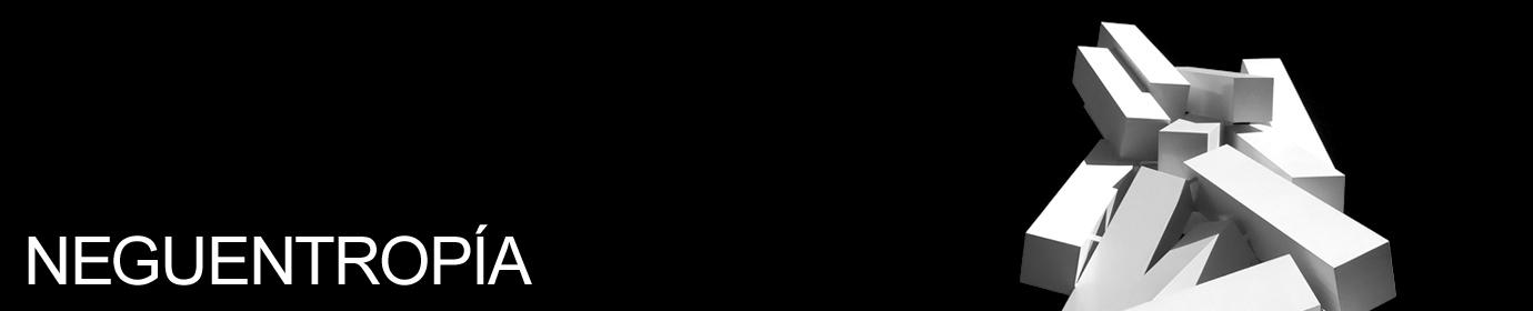 Neguentropía
