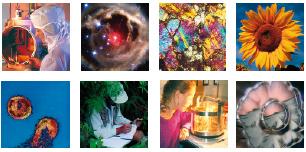 brochure-innovation-recherche_136347-2.jpg