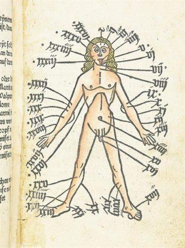 Buchmalerei eines Aderlass- oder Venenmännchen mit Anweisungen beschriftet