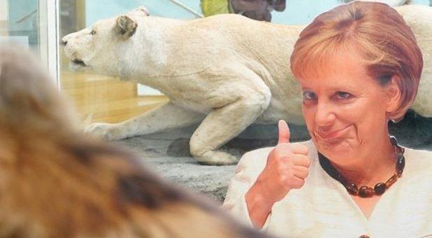 Zu sehen ist ein Pappaufsteller von Angela Merkel: Ihre Mundwinkel sind mit einem Bildbearbeitungsprogramm zu einem schiefen Lächeln nach oben gezogen, die macht eine Daumen nach oben Geste. Im Hintergrund sieht man einen ausgestopften Eisbären.