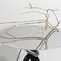 Ein Tisch mit bespiegelter Oberfläche und einem hölzernen, dünnen Ast mit mehrerern Verästelungen.