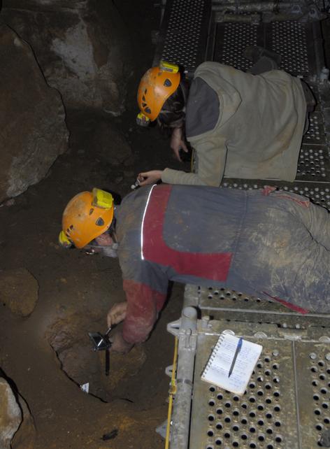 Couverture photographique de restes fauniques du secteur 28 de la grotte des Fraux