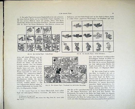 Das Tonalamatl der Aubin' schen Sammlung : p. 21