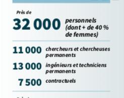 Données des personnels CNRS 2019 (depuis le rapport d'activité CNRS 2019: https://www.cnrs.fr/fr/le-cnrs)