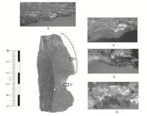 Lame avec pointe cassée, et traces de découpage de viande ou de peau (d'après Werra D et Malecka-Kukawka, J. 2017, Anthropologie Vol. 55: 193-205, fig. 3).