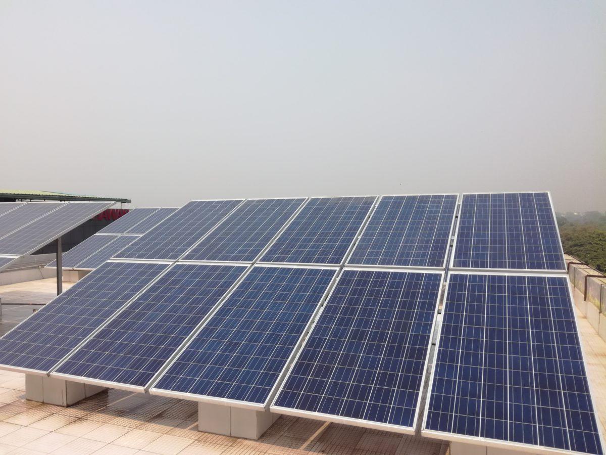 Observations sur quelques hybridations électriques à Delhi et dans sa périphérie