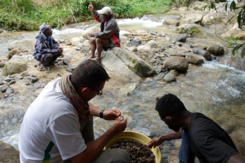 Lithic sorting after sieving at Manim creek, with the owner of the rockshelter back left.
