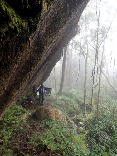 Resting in a rock shelter on Mt Wilhelm slope (Simbu province)