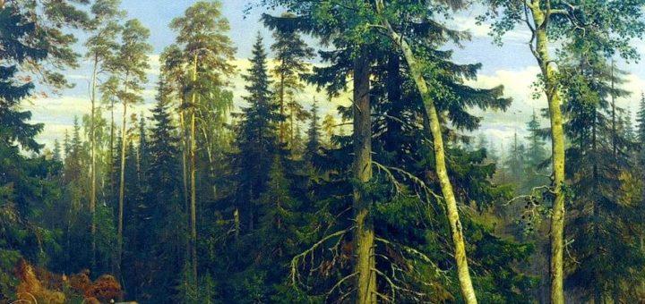 Forêt - Ivan Chichkine