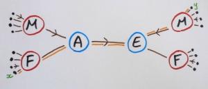 graphe_explication