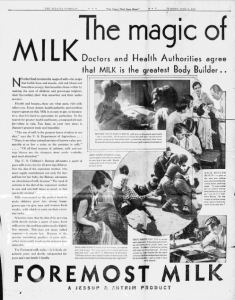 "Fig. 20. ""The Magic of Milk"". Publicité pour Foremost Milk. 1929-1930. Source : J. Walter Thompson Company. 35mm Microfilm Proofs, 1906-1960 and undated. Reel 9."