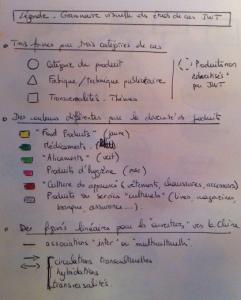 "Fig.2 - Une ""grammaire visuelle"" du micro/macrocosme thompsonien"
