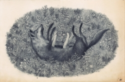 Joanna Concejo, Le loup et la fille, 2014 Graphite sur papier ancien, 42 x 27,4 cm, courtesy de l'artiste