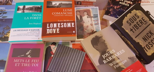 Photographie d'une sélection de romans traduits de l'américain