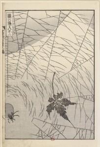 Hokusai (1760-1849), Ami ni hedataru Fuji (Le Mont Fuji vu à travers une toile d'araignée), tiré de Fugaku hyakkei (Cent vues du mont Fuji ), ukiyo-e, 1835-1847, 22,7 x 14,3 cm, BnF, Estampes, Dd-3144a (boîte 3)