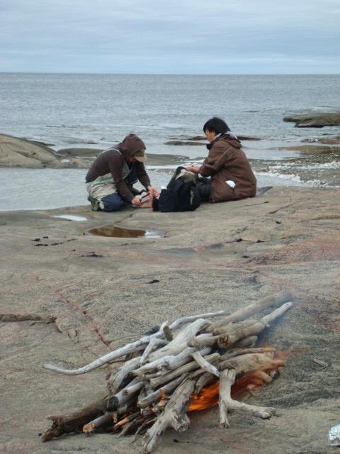Mise en œuvre de stratégies d'adaptation en Arctique
