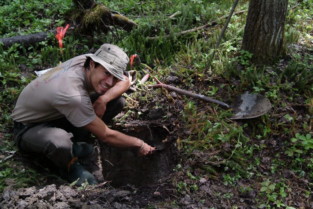 Séquestration du carbone dans les sols de la forêt boréale canadienne
