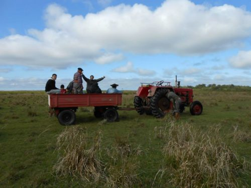 Le tracteur, vaillant moyen de transport.