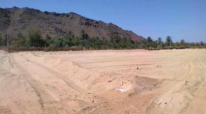 La double reconnaissance à l'Unesco, entre relation et mise en relation Le cas du parc du Tassili n'Ajjer et du rituel de la Sebeiba de l'oasis de Djanet en Algérie