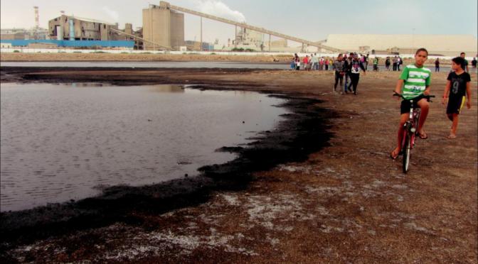 Protestations et mobilisations « environnementales » dans la Tunisie post-2011, entre mouvements spontanés et actions associatives