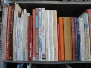 Collections de carnets de voyage