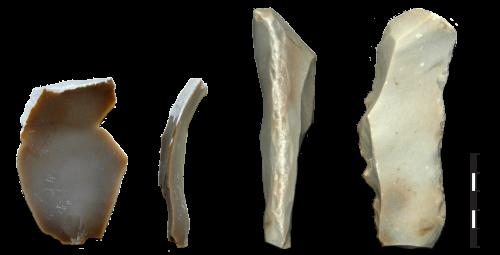 Outils en silex. 1-tranchant avant utilisation, 2-tranchant esquillé et écrasé après utilisation.